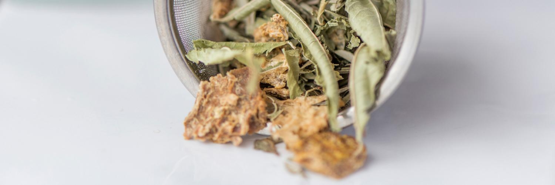 dos alquemistas mallorca tea cal reiet holistic retreat