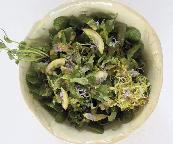 wild dandelion detox salad cal reiet holistic retreat santanyi mallorca