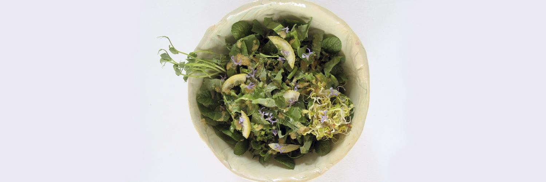 wild detox salad cal reiet holistic retreat santanyi mallorca